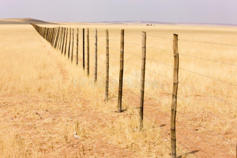 Download Rete Fissa In Deserto Namibiano Immagine Stock - Immagine di esterno, solo: 7307657