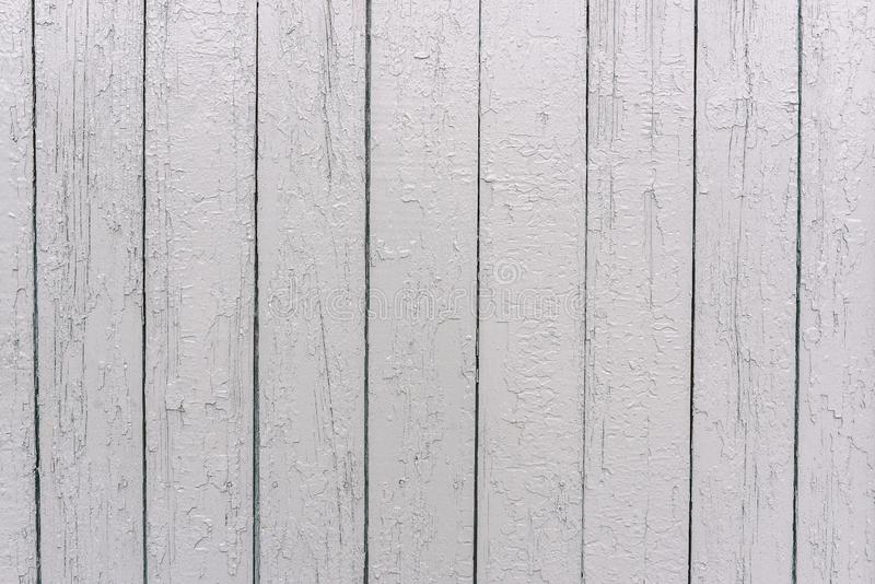 Rete fissa di legno bianca La superficie dell'albero Bordi dipinti nel colore bianco Struttura irregolare Priorit? bassa di legno fotografie stock libere da diritti
