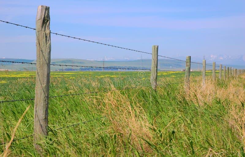 Rete fissa di un'azienda agricola fotografie stock