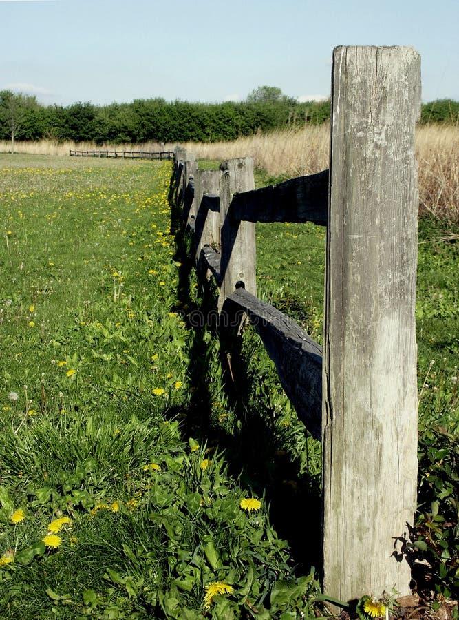 Download Rete fissa lunga fotografia stock. Immagine di recinzione - 207828
