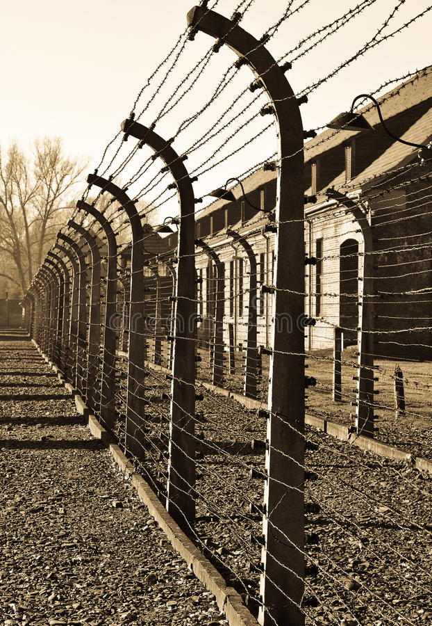 Rete fissa pungente dall'accampamento di Auschwitz fotografia stock libera da diritti