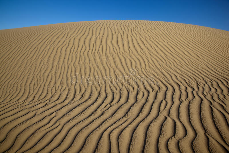 Reticoli nella sabbia immagini stock