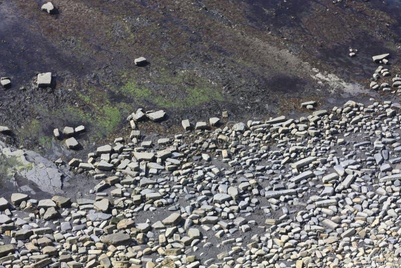 Reticoli rocciosi sul fondale marino di marea bassa immagini stock
