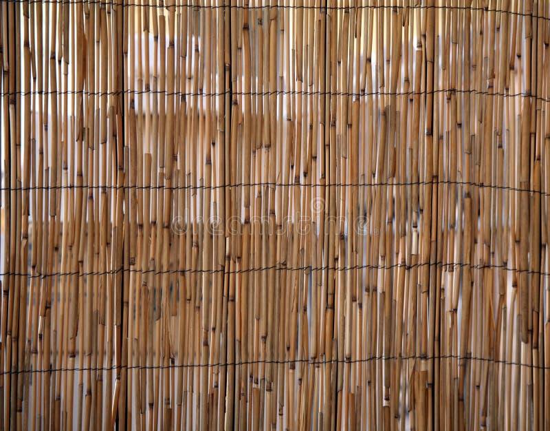 Reticolo del bambù di sbalzo fotografia stock libera da diritti