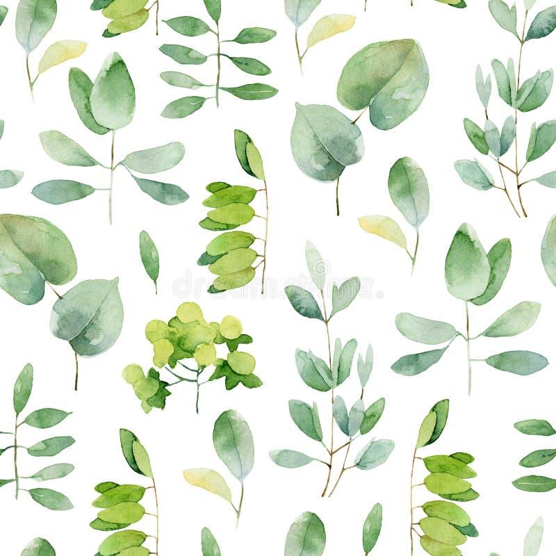 Reticolo di erbe senza giunte royalty illustrazione gratis