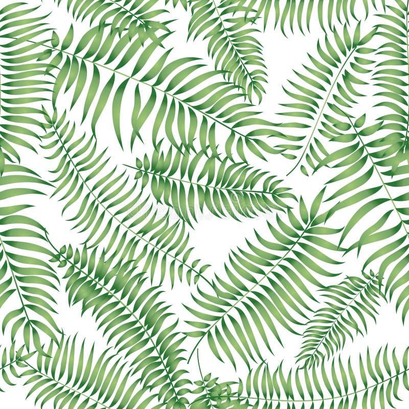 Reticolo floreale Fondo senza cuciture di estate delle foglie di palma tropicali illustrazione di stock