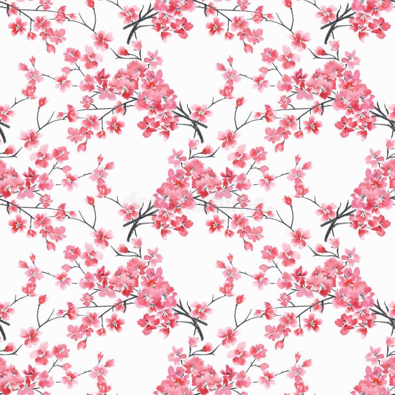 Reticolo floreale senza giunte rami dell'acquerello dei fiori di ciliegia su un fondo bianco royalty illustrazione gratis