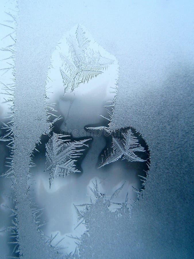 Reticolo gelido ad una finestra fotografia stock libera da diritti