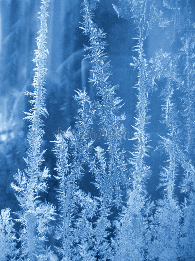 Reticolo naturale gelido fotografia stock libera da diritti