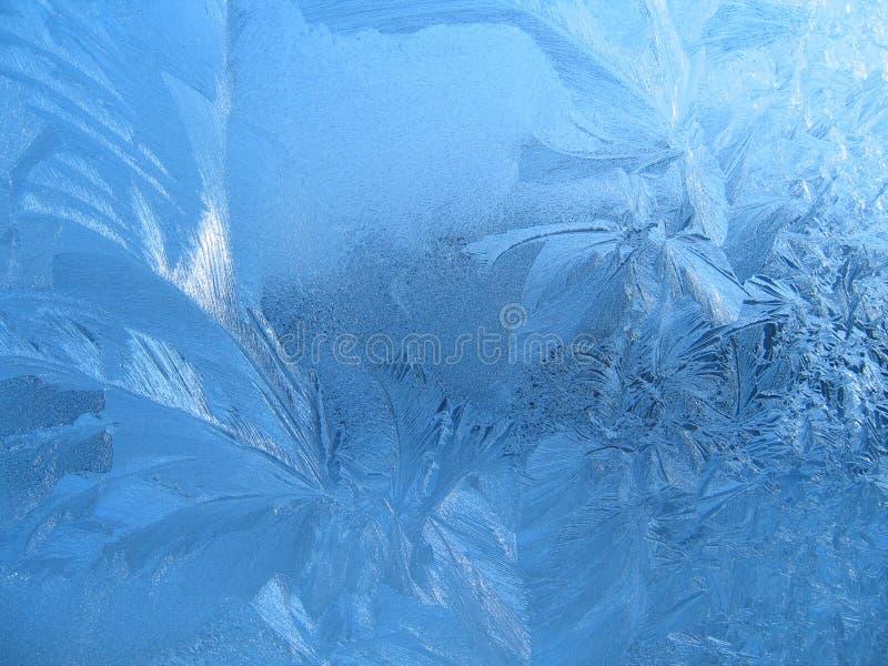 Reticolo naturale gelido immagini stock libere da diritti