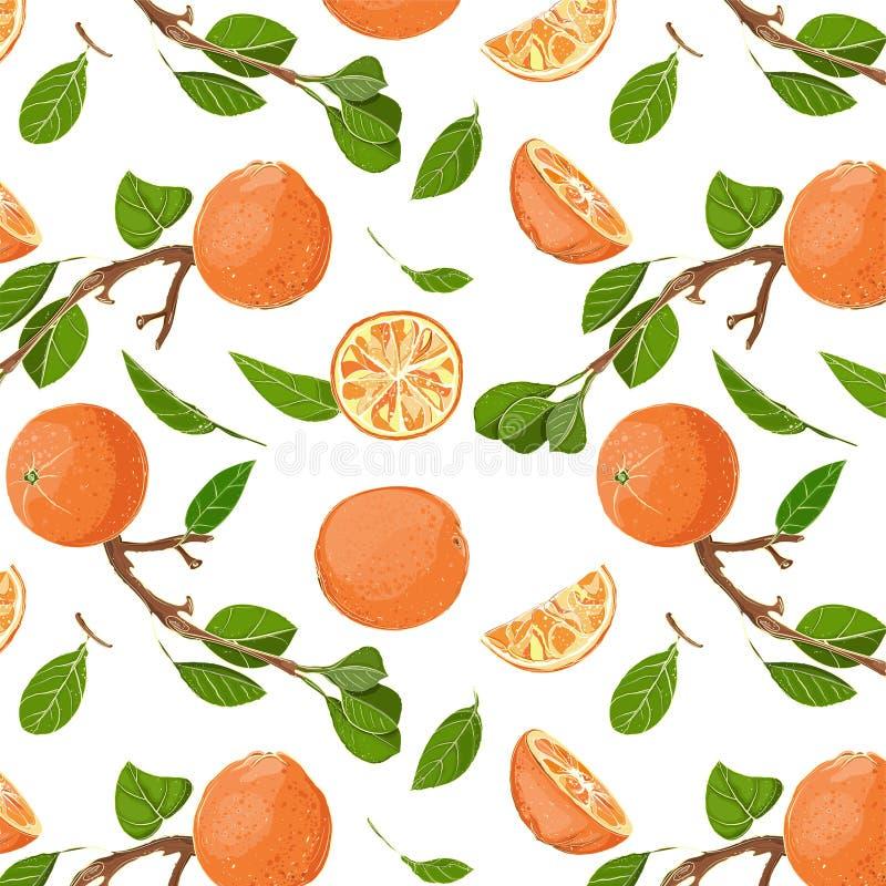 Reticolo senza cuciture fresco delle foglie e delle arance illustrazione vettoriale