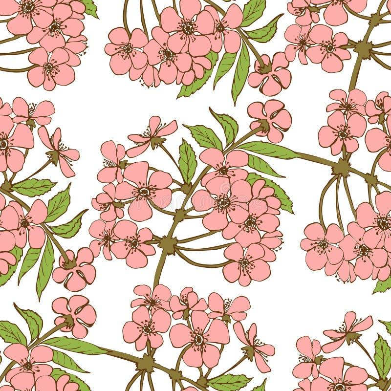 Reticolo senza giunte del fiore di ciliegia illustrazione - Modello di base del fiore ...