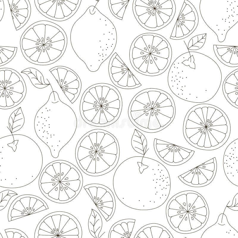 Reticolo senza giunte dell'agrume Fondo di vettore della frutta Fondo in bianco e nero con il limone e l'arancia Naturale e sano illustrazione vettoriale