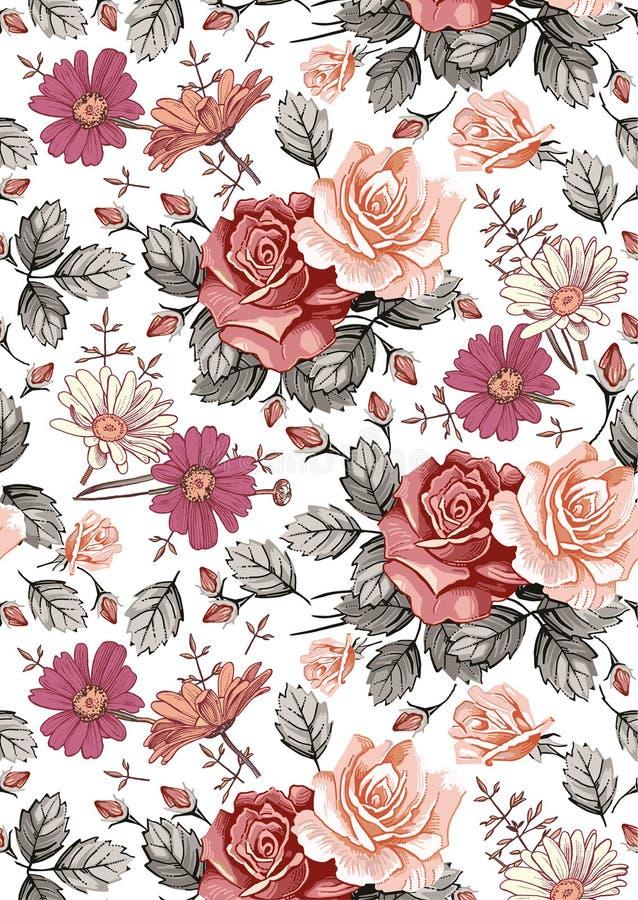 Reticolo senza giunte Fiori isolati realistici Priorità bassa dell'annata Wildflowers del tessuto di Rosa della camomilla che dis illustrazione vettoriale