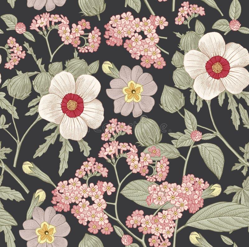 Reticolo senza giunte Fiori isolati realistici Vettore d'annata dell'incisione del disegno del hibisc di primavera dell'ibisco de illustrazione di stock
