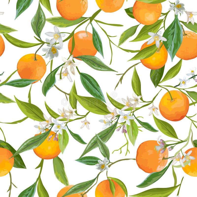 Reticolo senza giunte L'arancia fruttifica fondo Reticolo floreale illustrazione vettoriale