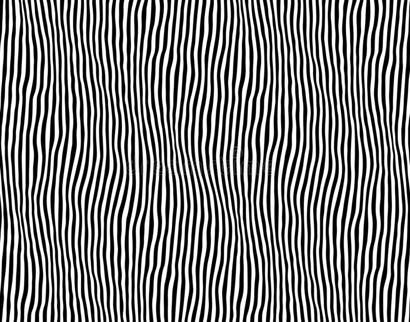 Reticolo a strisce senza giunte Linea illustrazione della zebra di vettore Illustrazione di vettore illustrazione vettoriale