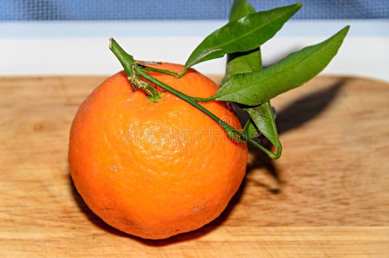 Reticulata con las hojas verdes, cierre de la fruta cítrica de la mandarina para arriba imagenes de archivo