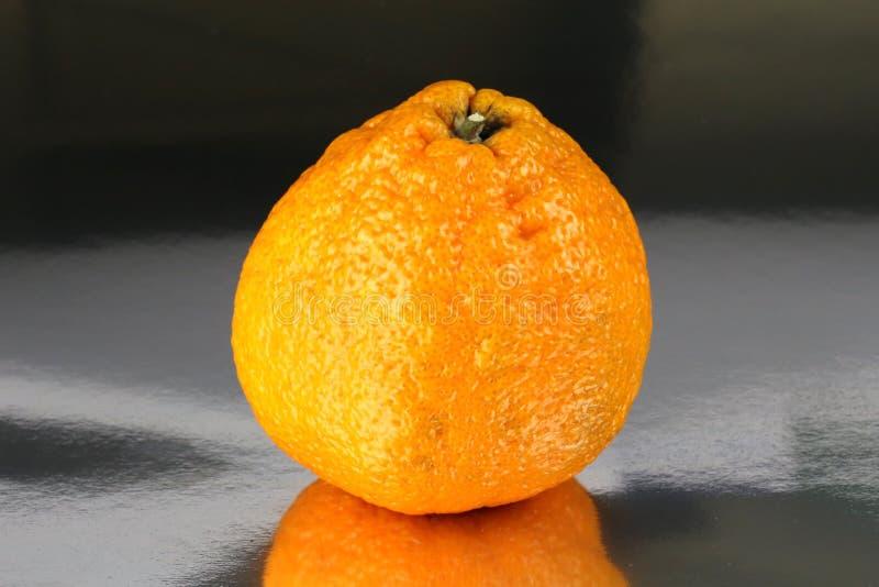Reticulata d'agrume de mandarine de sumo images stock