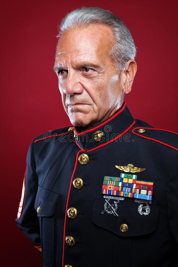 Download Retired Marine in Uniform stock photo. Image of history - 20914008