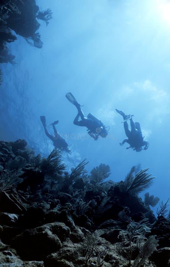 Retorno dos mergulhadores de profundamente fotografia de stock royalty free
