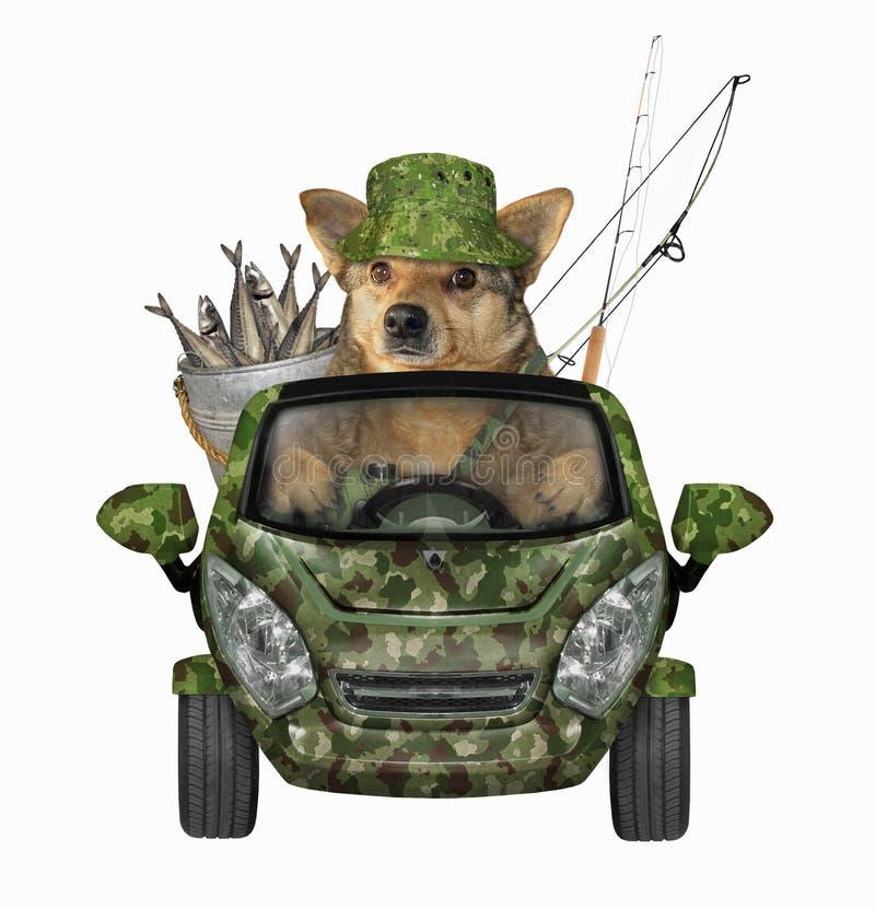 Retornos do cão da pesca pelo carro fotografia de stock