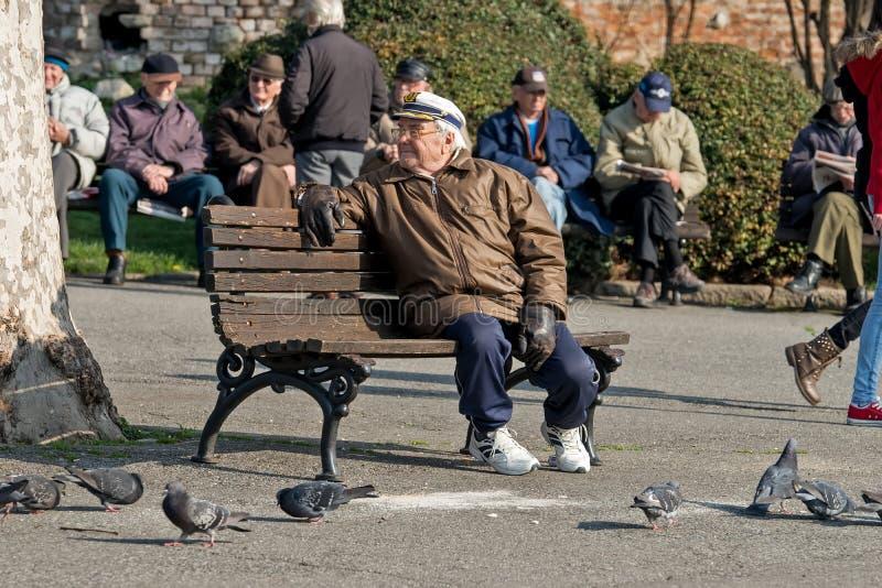 Retraités en parc regardant les pigeons 2 images libres de droits