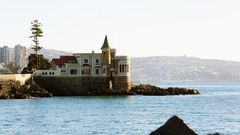 Retranchez-vous le wulff sur la roche dans Viña Del Mar images libres de droits