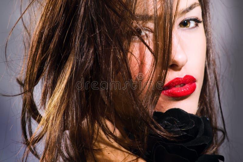 Download Retrato imagen de archivo. Imagen de belleza, oscuro, hairstyle - 7286741