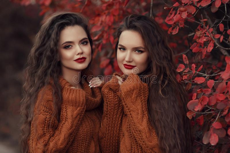 Retrato al aire libre del otoño de dos mujeres Gemelo moreno hermoso joven imágenes de archivo libres de regalías
