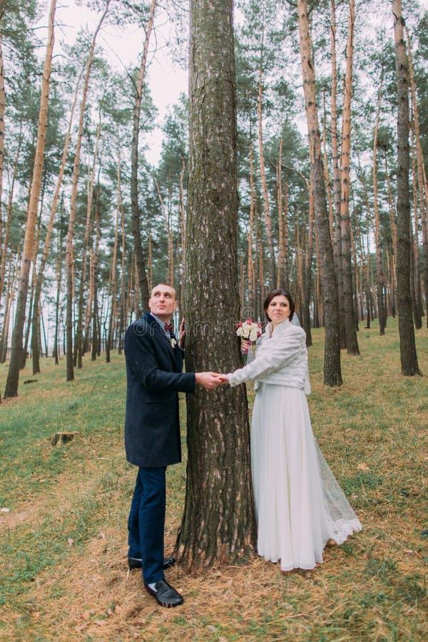 Retrato al aire libre del recién casado El blanco lindo vistió a la novia con su novio hermoso que presentaba en bosque verde del fotos de archivo libres de regalías