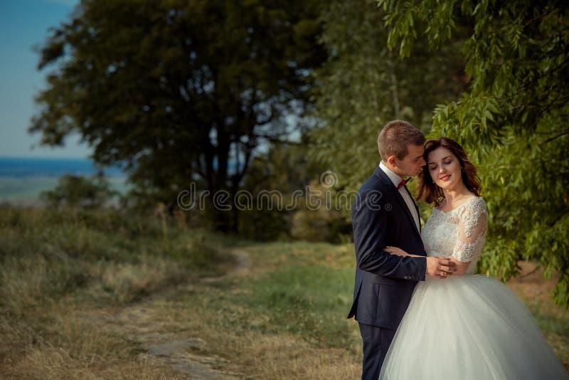 Retrato al aire libre romántico de los pares elegantes atractivos del recién casado que abrazan blando en el fondo del bosque foto de archivo libre de regalías