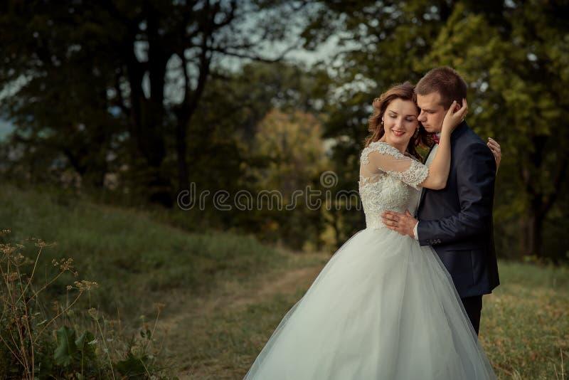 Retrato al aire libre romántico El par atractivo elegante del recién casado está abrazando y la novia magnífica está frotando lig imagen de archivo libre de regalías