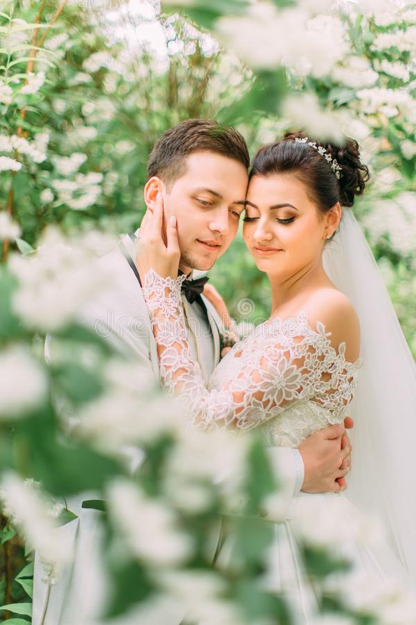 Retrato al aire libre sensible de los recienes casados en el jardín La novia frota ligeramente la cara del novio imagenes de archivo
