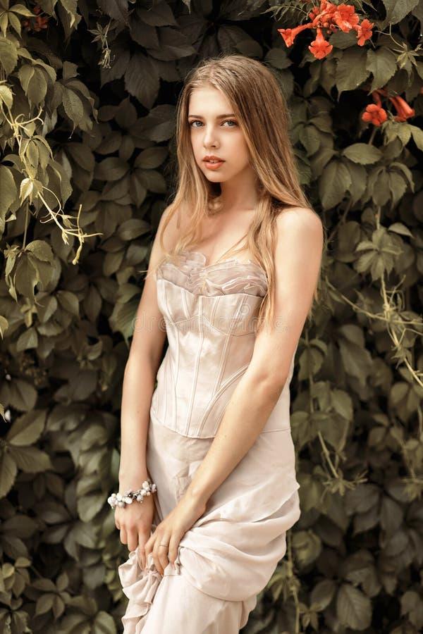 Retrato artístico de uma moça em um vestido em um fundo de foto de stock