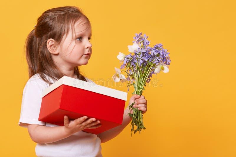 Retrato ascendente cercano de la niña con la caja de regalo roja y ramo de floretes azules, preparándose para felicitar a su mamá imagen de archivo libre de regalías