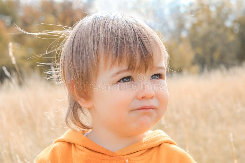 Retrato ascendente cercano del pequeño bebé pensativo lindo que mira en la distancia en campo del otoño fotografía de archivo libre de regalías