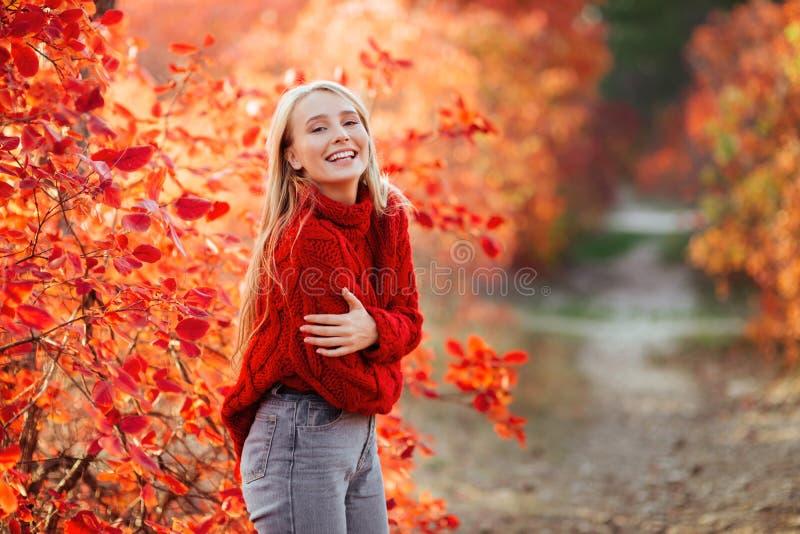 Retrato ascendente próximo de uma menina bonita perto das folhas de outono coloridas foto de stock royalty free