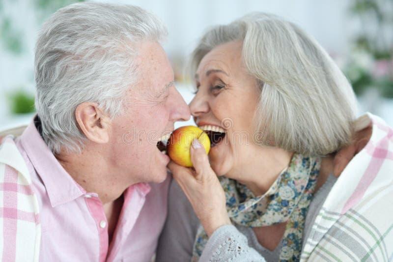 Retrato ascendente próximo dos pares superiores felizes que têm o divertimento imagem de stock