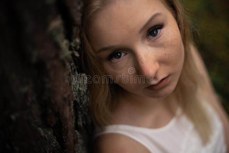 Retrato ascendente pr?ximo - ninfa loura nova bonita da floresta da mulher no vestido branco na madeira sempre-verde foto de stock royalty free