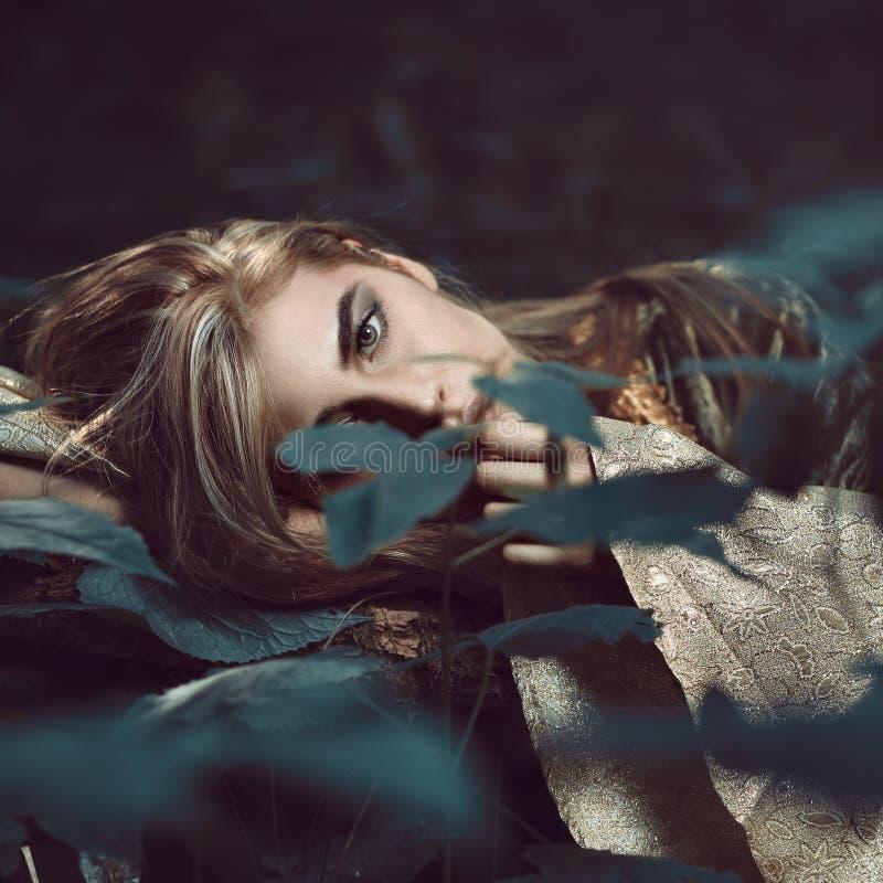 Retrato bonito da mulher na floresta escura fotos de stock