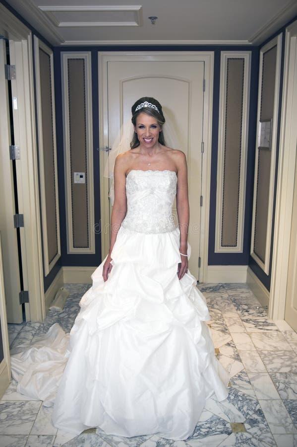 Retrato bonito da noiva foto de stock royalty free