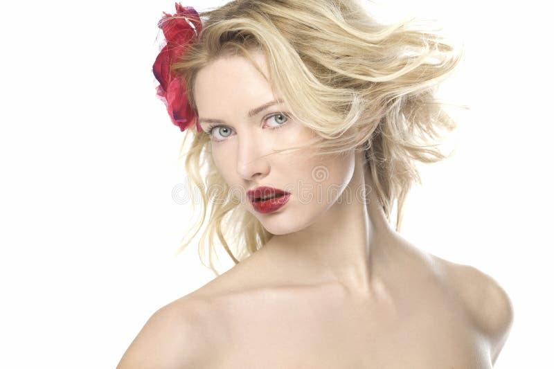 Retrato bonito das mulheres da forma com bordos vermelhos fotos de stock