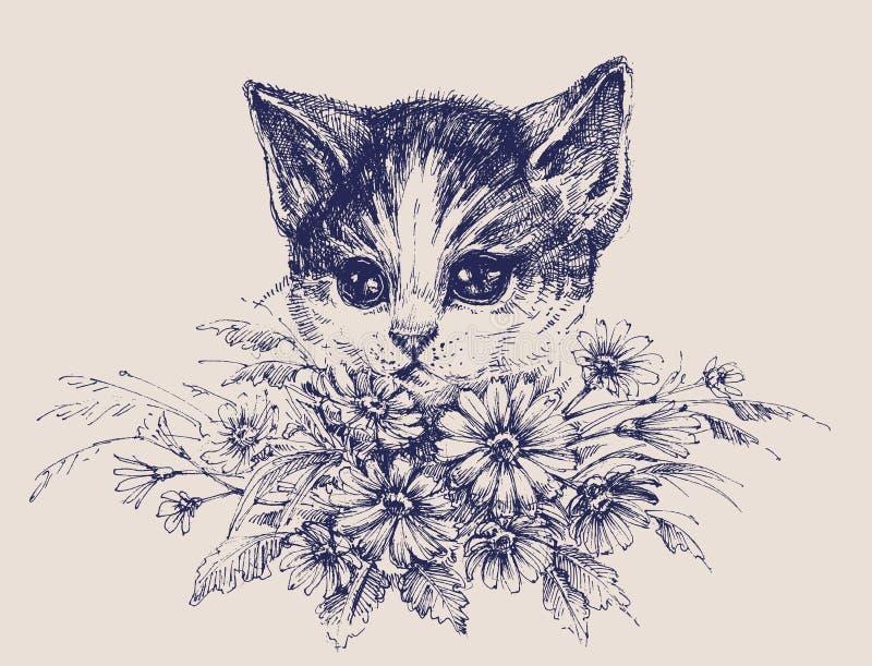Retrato bonito do gato ilustração do vetor