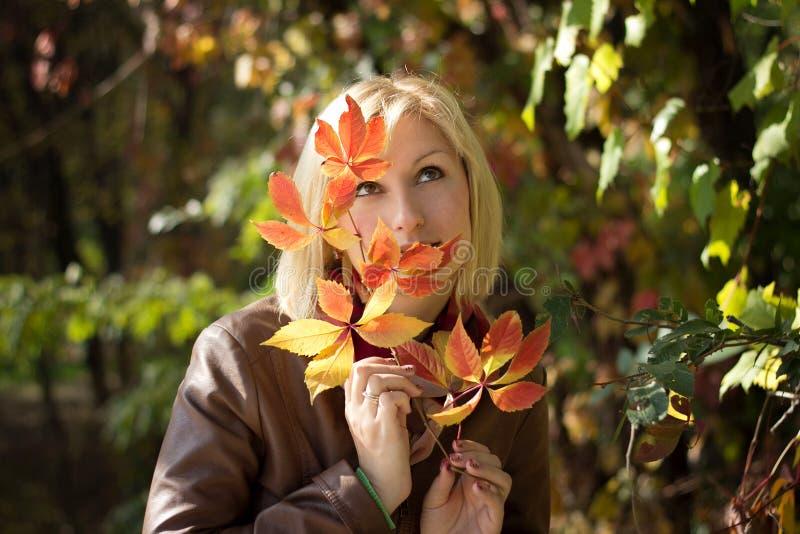 Retrato bonito do outono da menina fotografia de stock