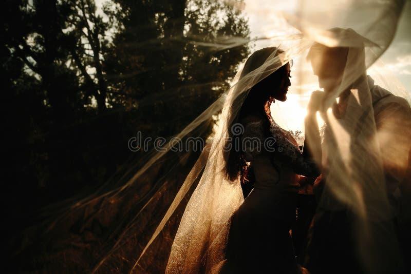 Retrato bonito dos pares do casamento atrás do véu imagens de stock royalty free