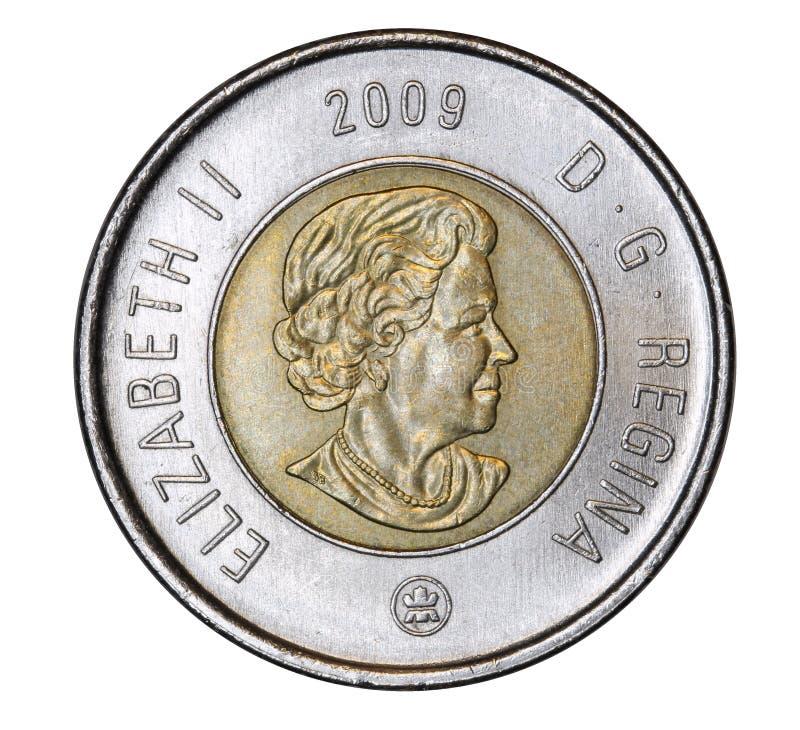 Retrato canadense da exibição da moeda da rainha Elizabeth foto de stock royalty free