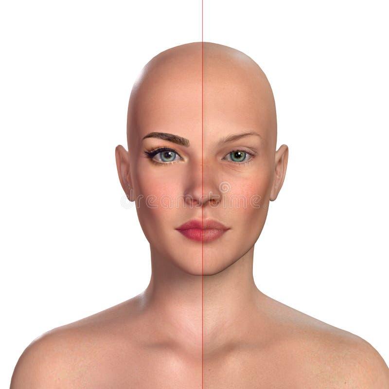 retrato comparativo 3d de mujeres con y sin maquillaje stock de ilustración
