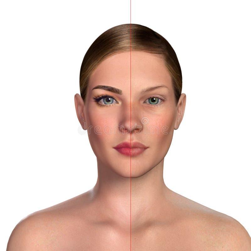retrato comparativo 3d de mujeres con y sin maquillaje ilustración del vector