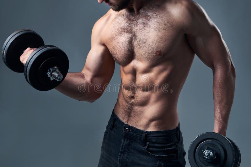 Retrato cosechado del hombre descamisado fuerte del deporte con pesas de gimnasia aislado fotos de archivo